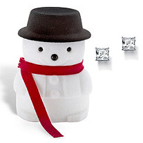 Princess-Cut Cubic Zirconia Stud Earrings 3.24 TCW in Silvertone with Free Snowman Box
