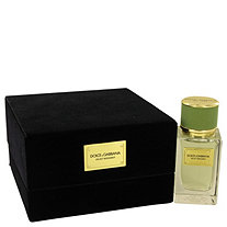 Dolce & Gabbana Velvet Bergamot by Dolce & Gabbana for Men Eau De Parfum Spray 1.6 oz